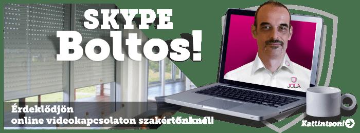 Skype boltos